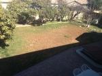 2013_Backyard_001